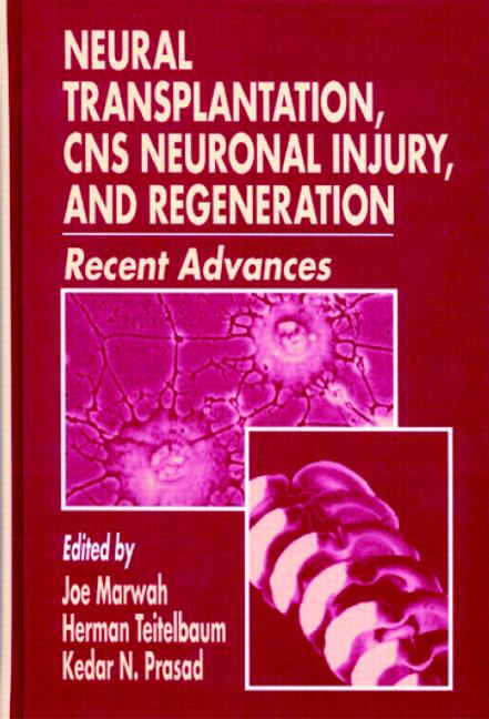 Neural Transplantation, CNS Neuronal Injury, and Regeneration: 1st Edition (Hardback) book cover