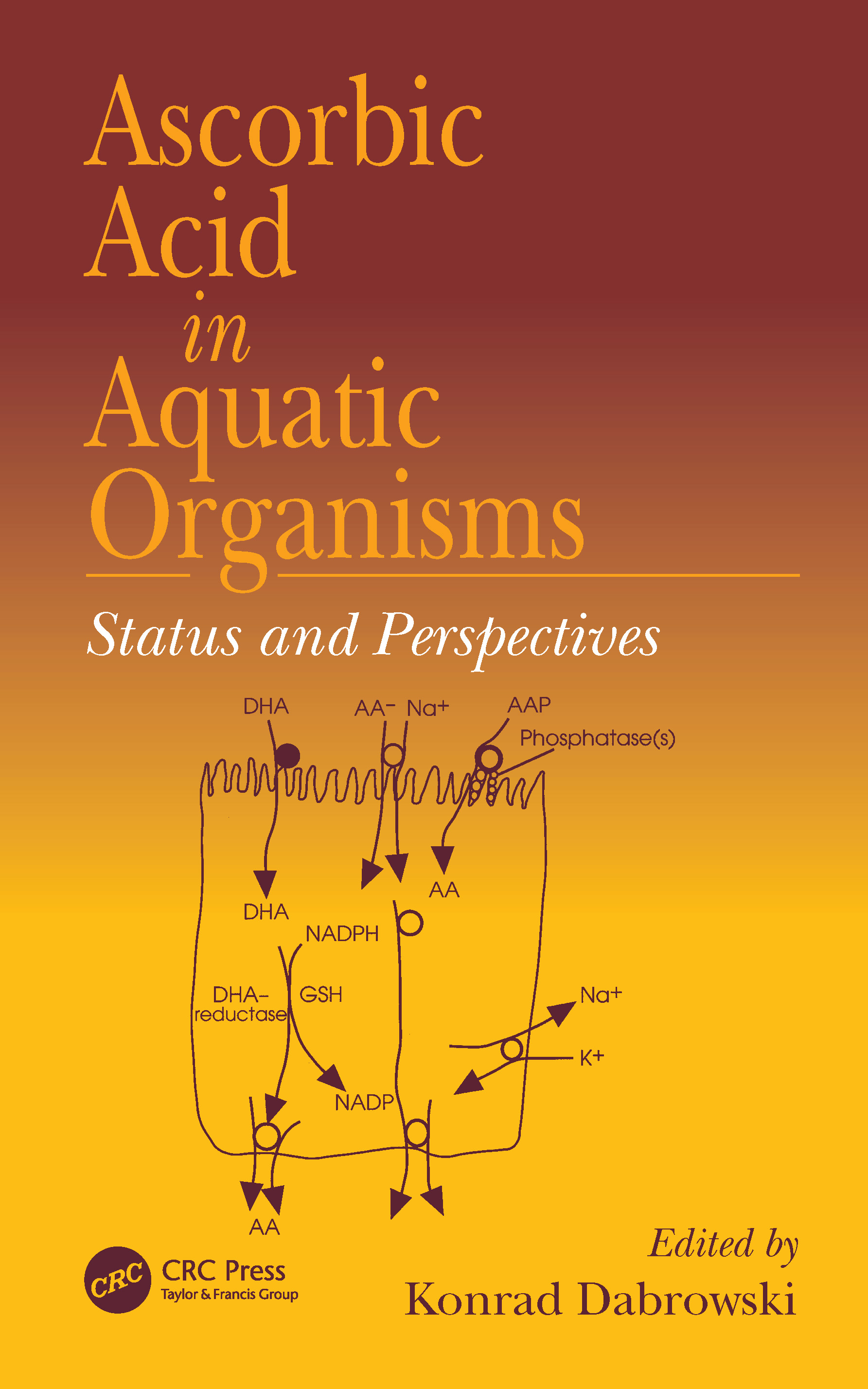 Ascorbic Acid In Aquatic Organisms: Status and Perspectives, 1st Edition (Hardback) book cover