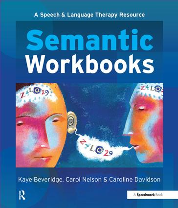 Semantic Workbooks: 1st Edition (Paperback) book cover