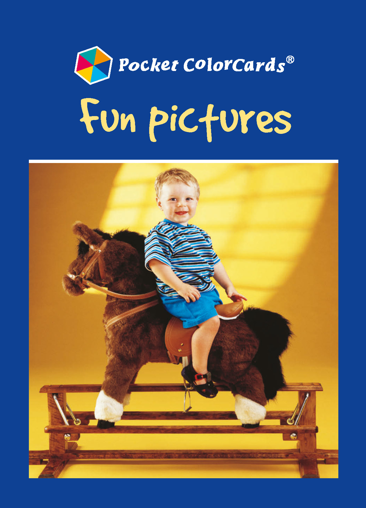 Fun Pictures: Colorcards: 1st Edition (Flashcards) book cover
