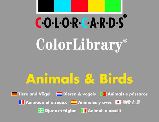 Animals & Birds ColorLibrary: Colorcards: 1st Edition (Flashcards) book cover