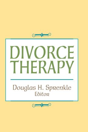 Divorce Therapy (Hardback) book cover