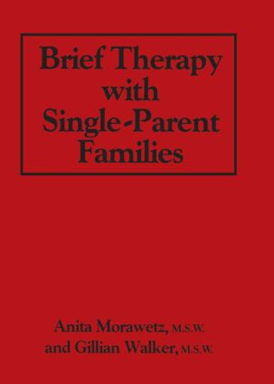 Brief Therapy With Single-Parent Families (Hardback) book cover