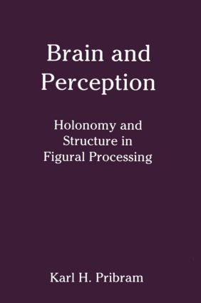 Brain and Perception: Holonomy and Structure in Figural Processing (e-Book) book cover