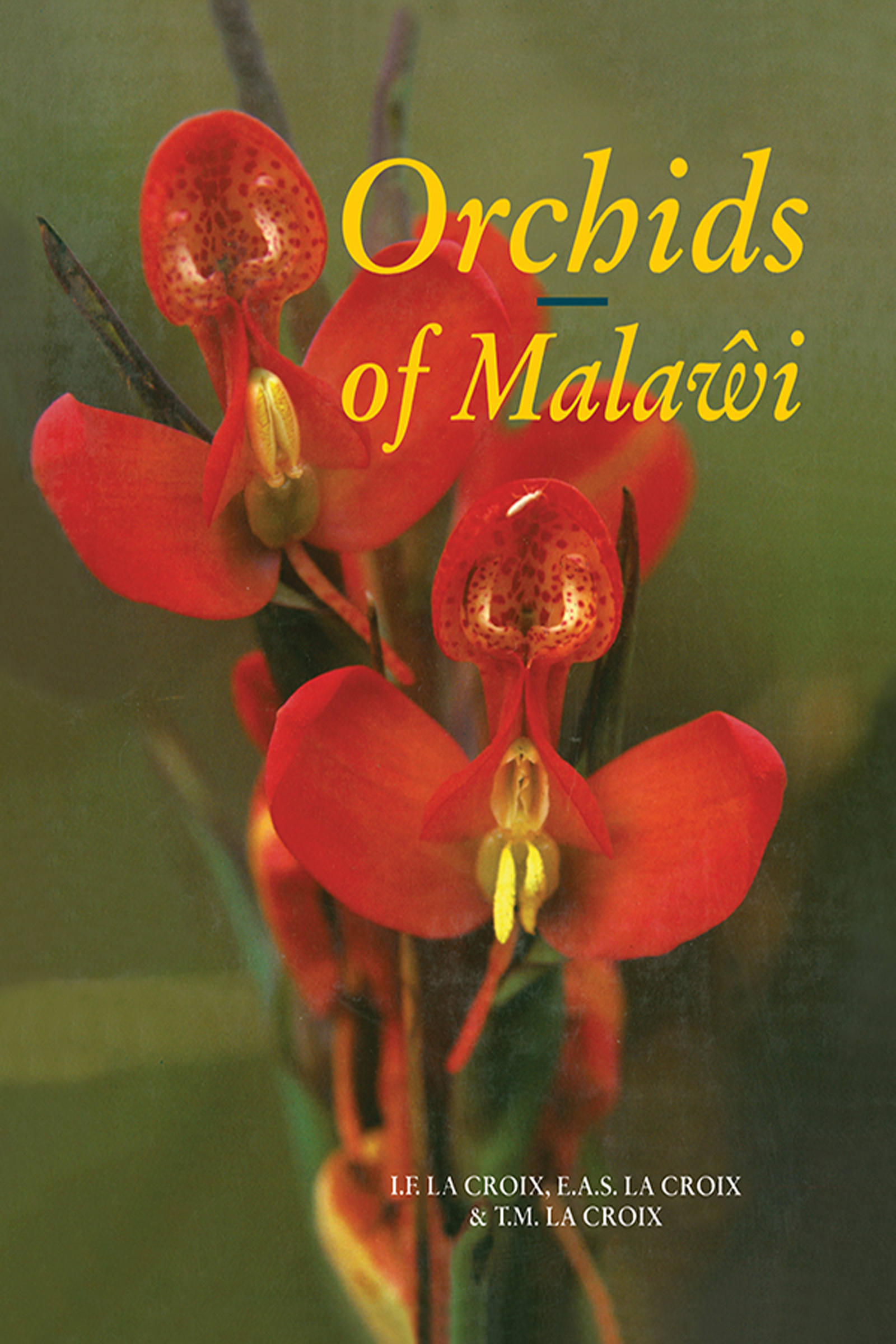 Orchids of Malawi