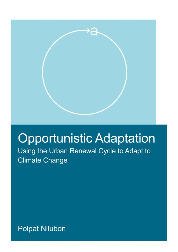 Assessing the adaptation potential and opportunities of an urban area