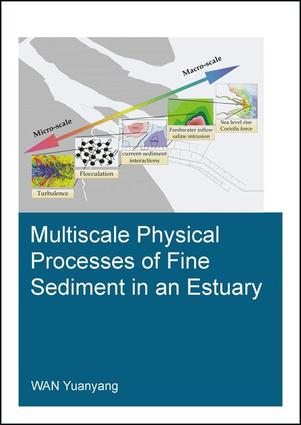 Multiscale Physical Processes of Fine Sediment in an Estuary: 1st Edition (Paperback) book cover