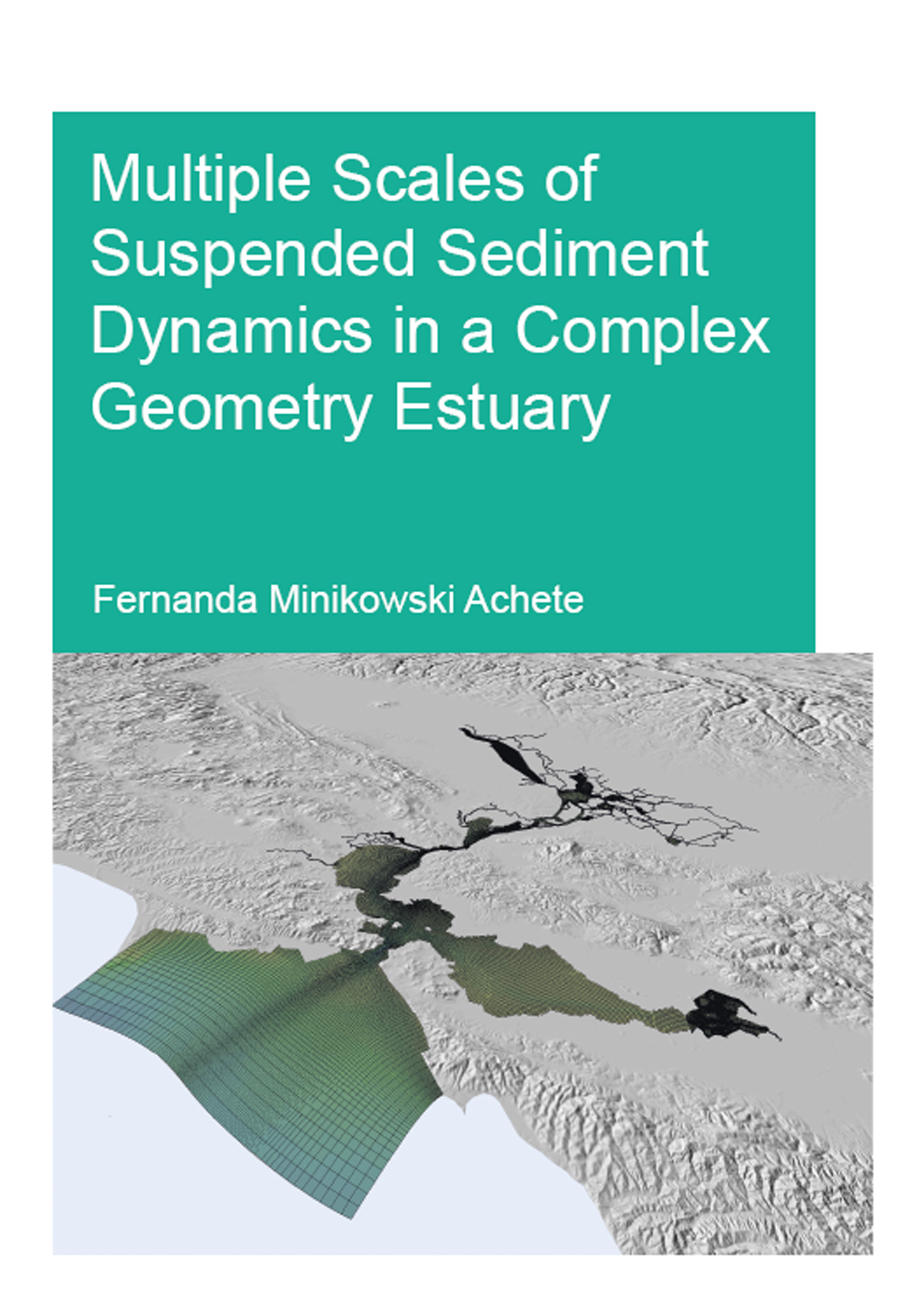 Multiple Scales of Suspended Sediment Dynamics in a Complex Geometry Estuary: 1st Edition (Paperback) book cover