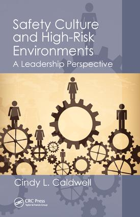 Safety Culture and High-Risk Environments: A Leadership Perspective, 1st Edition (Paperback) book cover