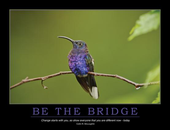 Be the Bridge Poster: 1st Edition (Poster) book cover