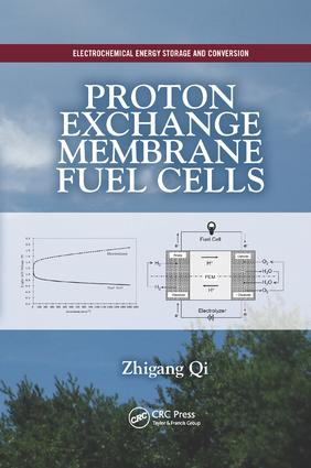 Proton Exchange Membrane Fuel Cells book cover