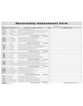 Abnormality Assessment Form: 1st Edition (Loose-leaf) book cover