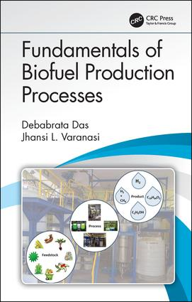 Fundamentals of Biofuel Production Processes: 1st Edition (Hardback) book cover