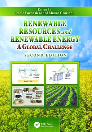 Renewable Resources and Renewable Energy: A Global Challenge, Second Edition, 2nd Edition (Paperback) book cover