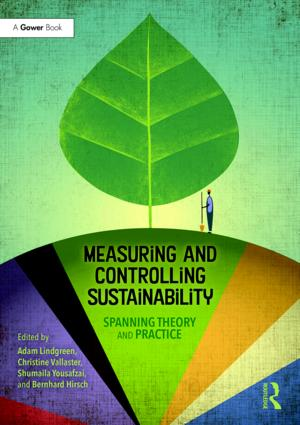 Measuring and Controlling Sustainability: Spanning Theory and Practice book cover