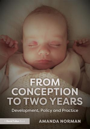 From Conception to Two Years: Development, Policy and Practice book cover