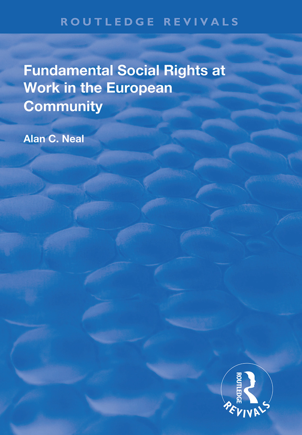Fundamental Social Rights at Work in the European Community: 1st Edition (Hardback) book cover