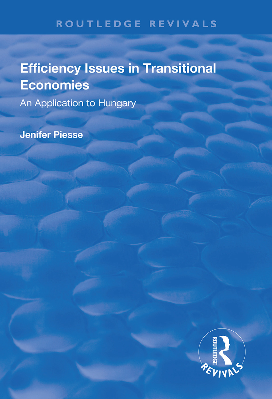 Efficiency Issues in Transitional Economies: Application to Hungary book cover