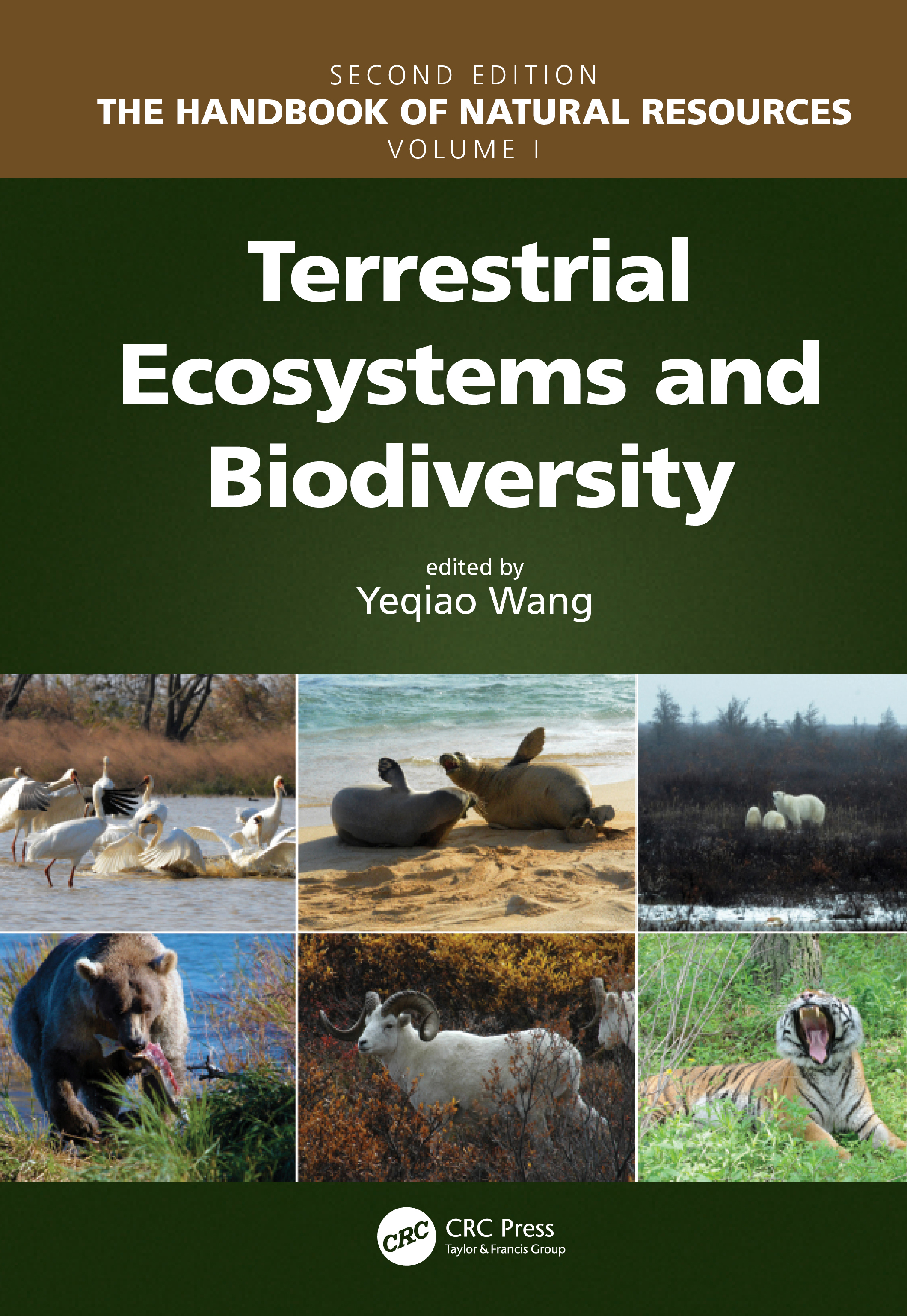 Terrestrial Ecosystems and Biodiversity book cover