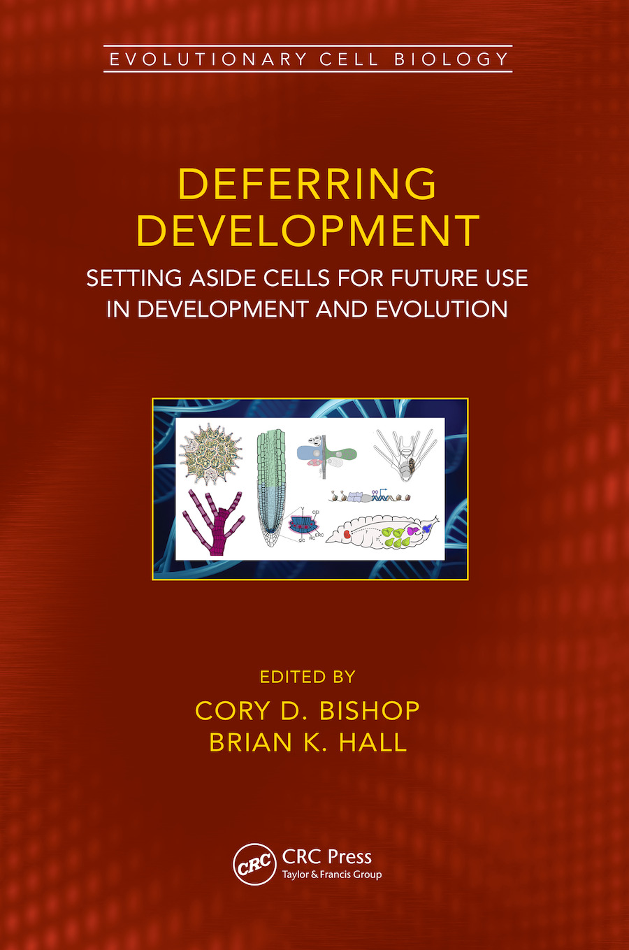 Deferred-Use Cells in Development and Evolution