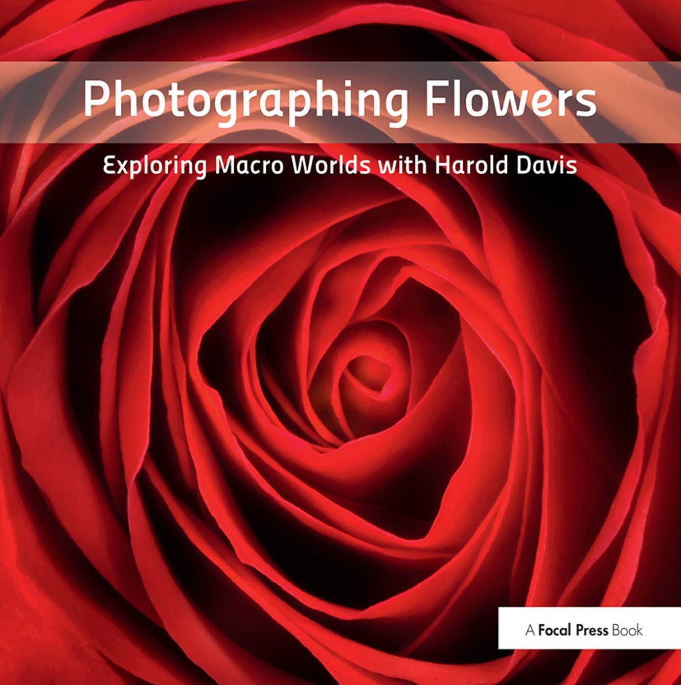 Photographing Flowers: Exploring Macro Worlds with Harold Davis, 1st Edition (Hardback) book cover