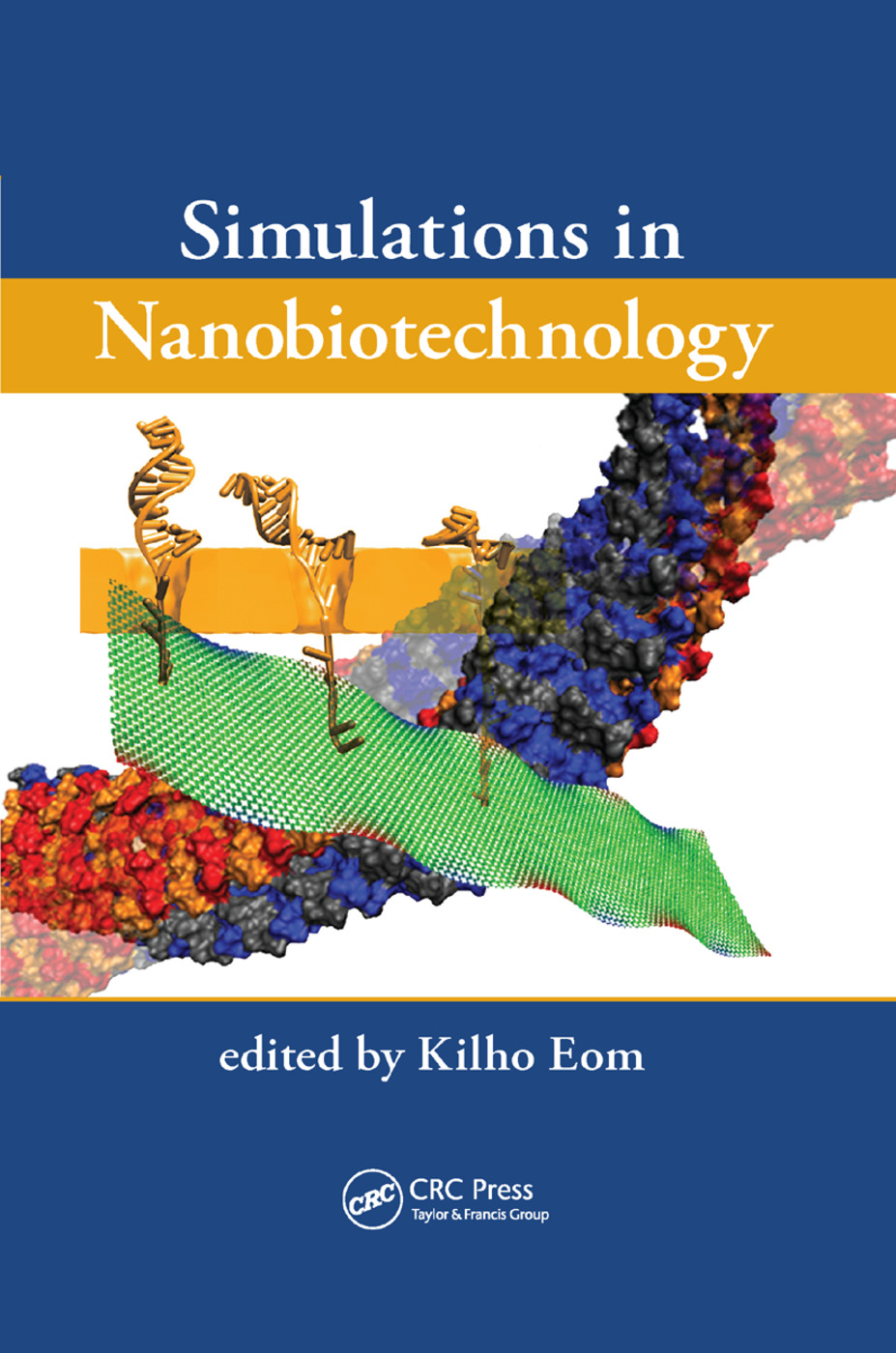 Simulations in Nanobiotechnology: 1st Edition (Paperback) book cover
