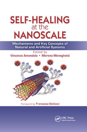 Self-Healing at the Nanoscale: Mechanisms and Key Concepts of Natural and Artificial Systems, 1st Edition (Paperback) book cover