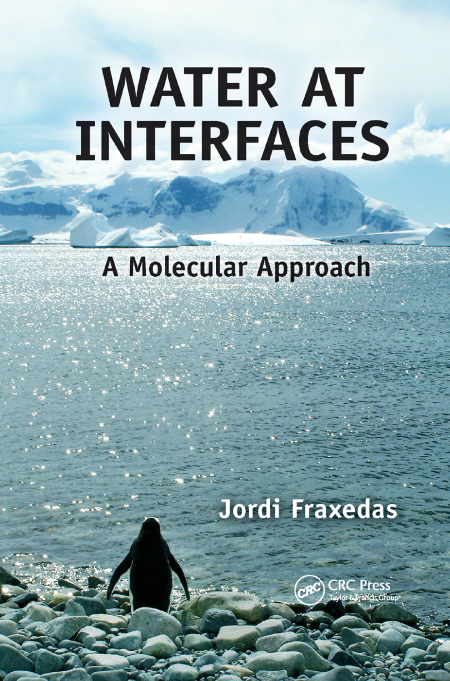 Water at Interfaces: A Molecular Approach, 1st Edition (Paperback) book cover