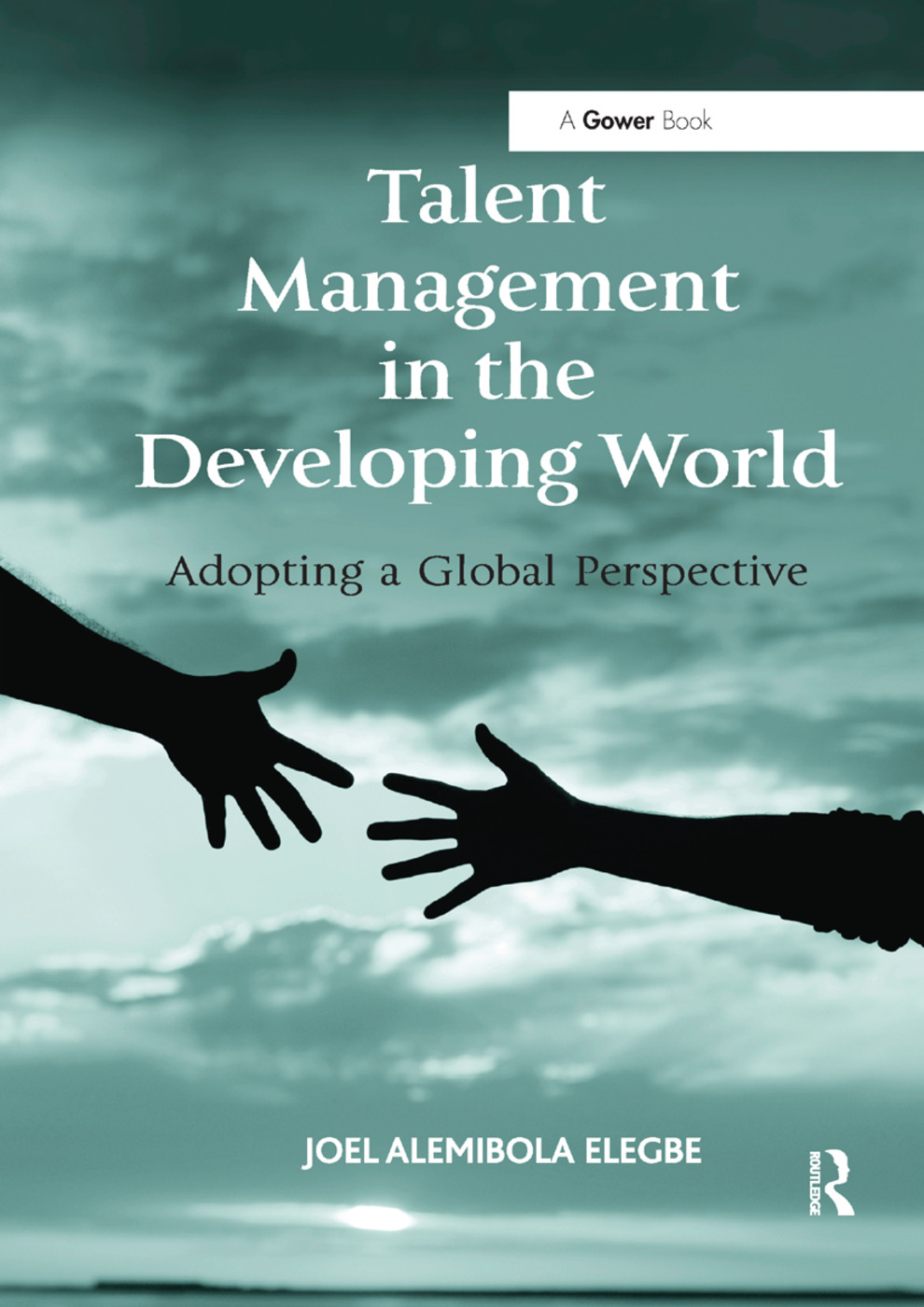 Talent Management in the Developing World: Adopting a Global Perspective book cover