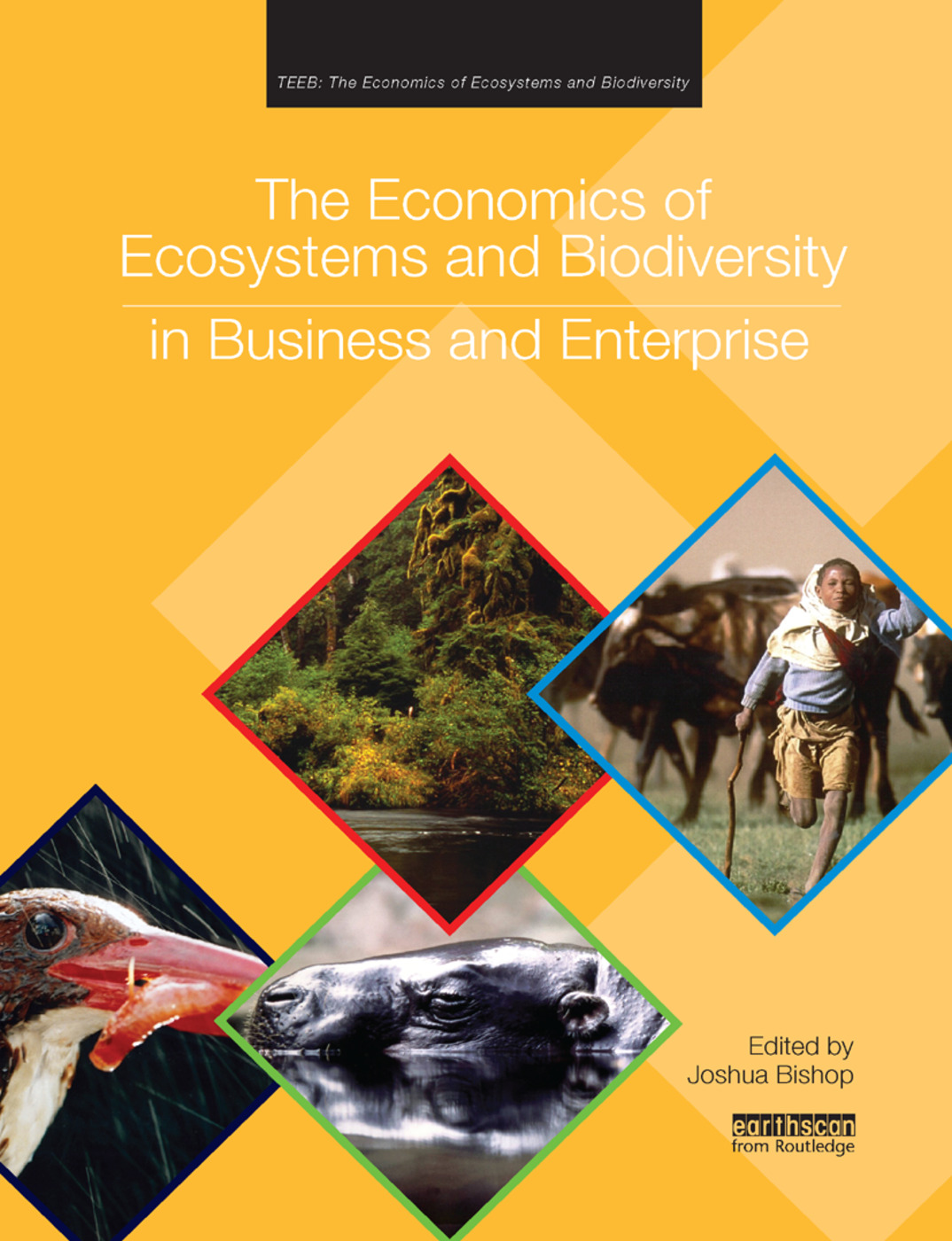 The Economics of Ecosystems and Biodiversity in Business and Enterprise: 1st Edition (e-Book) book cover