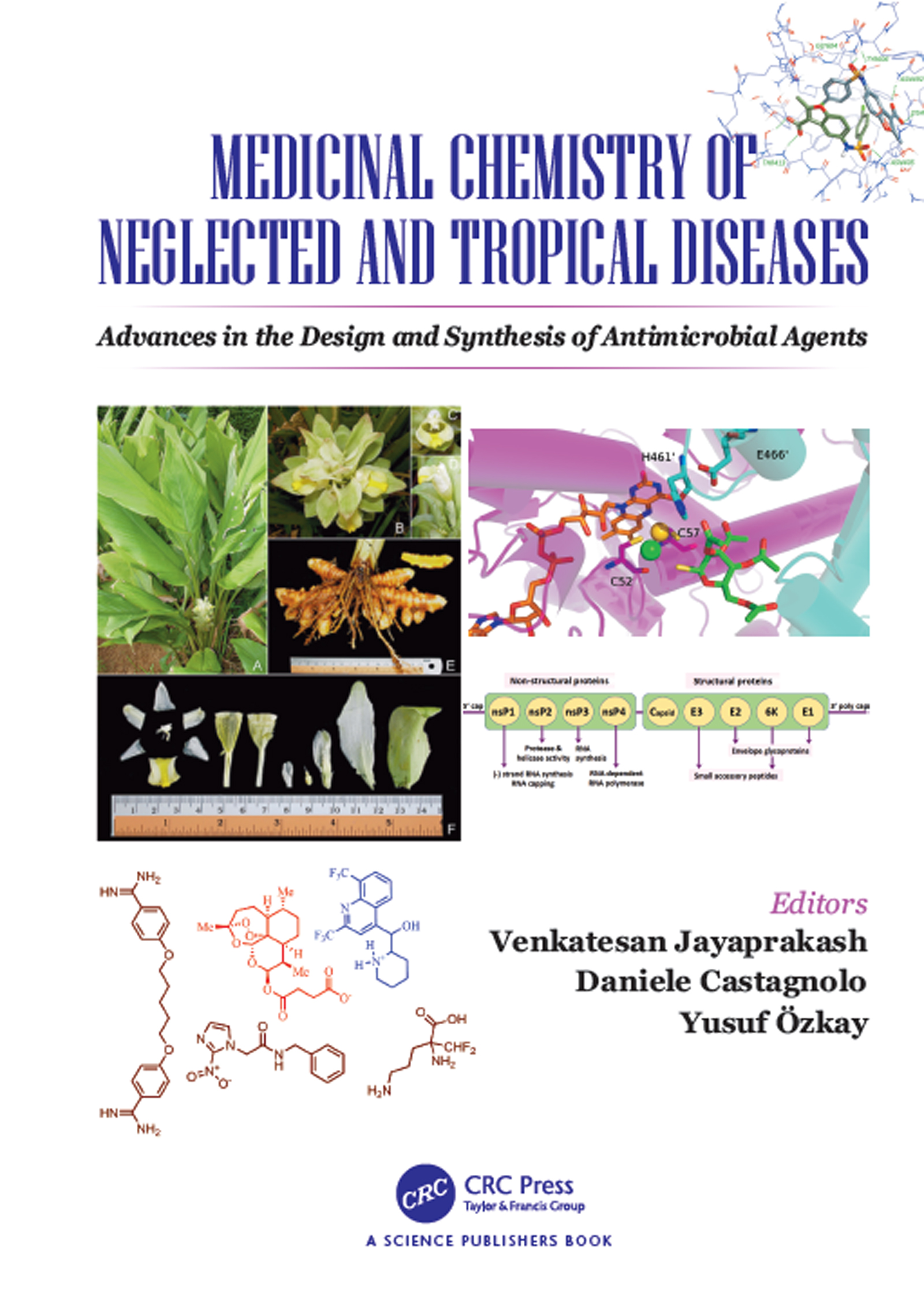 Medicinal Chemistry of Neglected and Tropical Diseases: Advances in the Design and Synthesis of Antimicrobial Agents, 1st Edition (e-Book) book cover