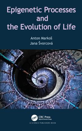 The Manifold of Prebiotic Evolution