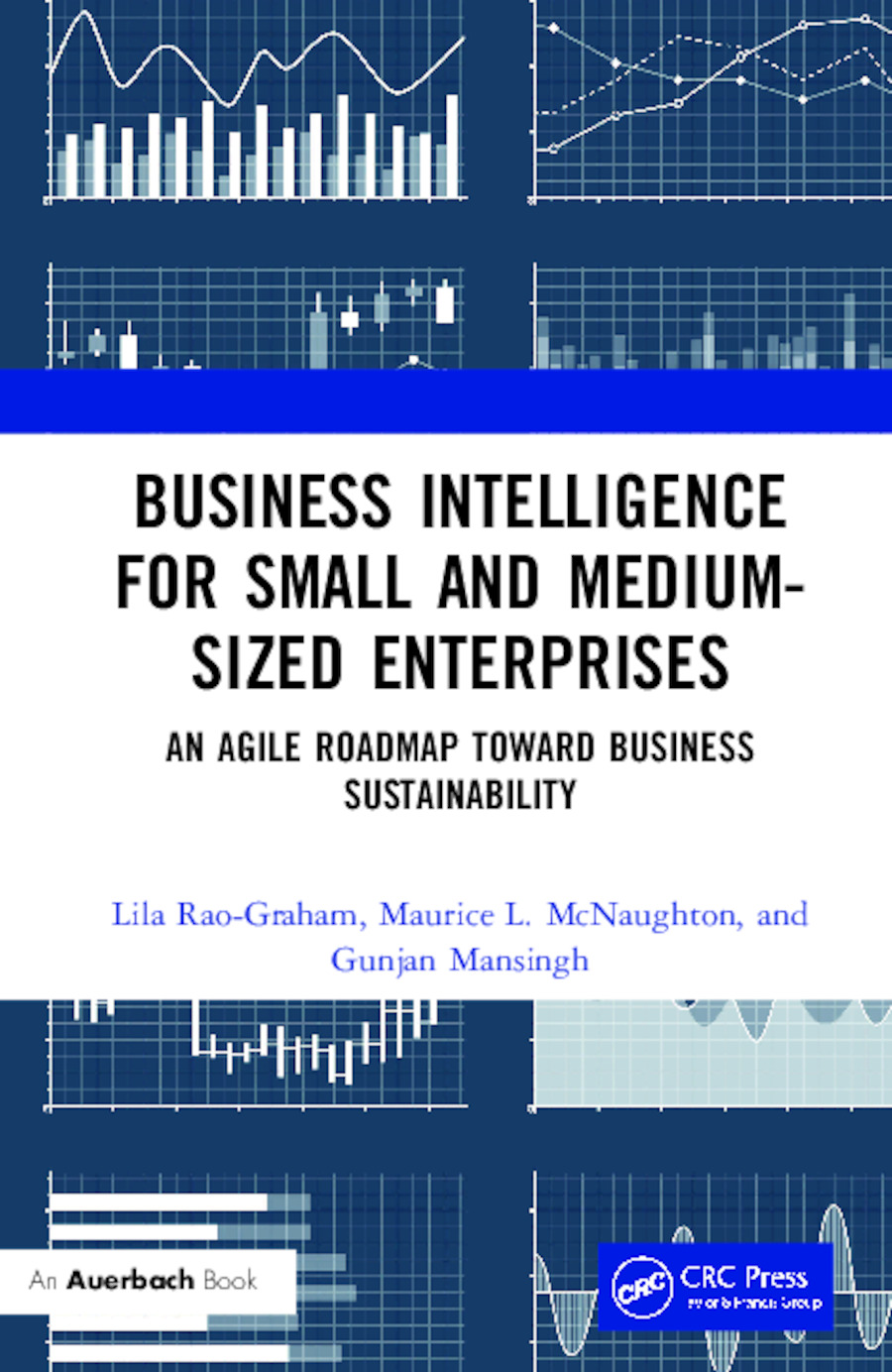 Business Intelligence for Small and Medium-Sized Enterprises: An Agile Roadmap toward Business Sustainability book cover