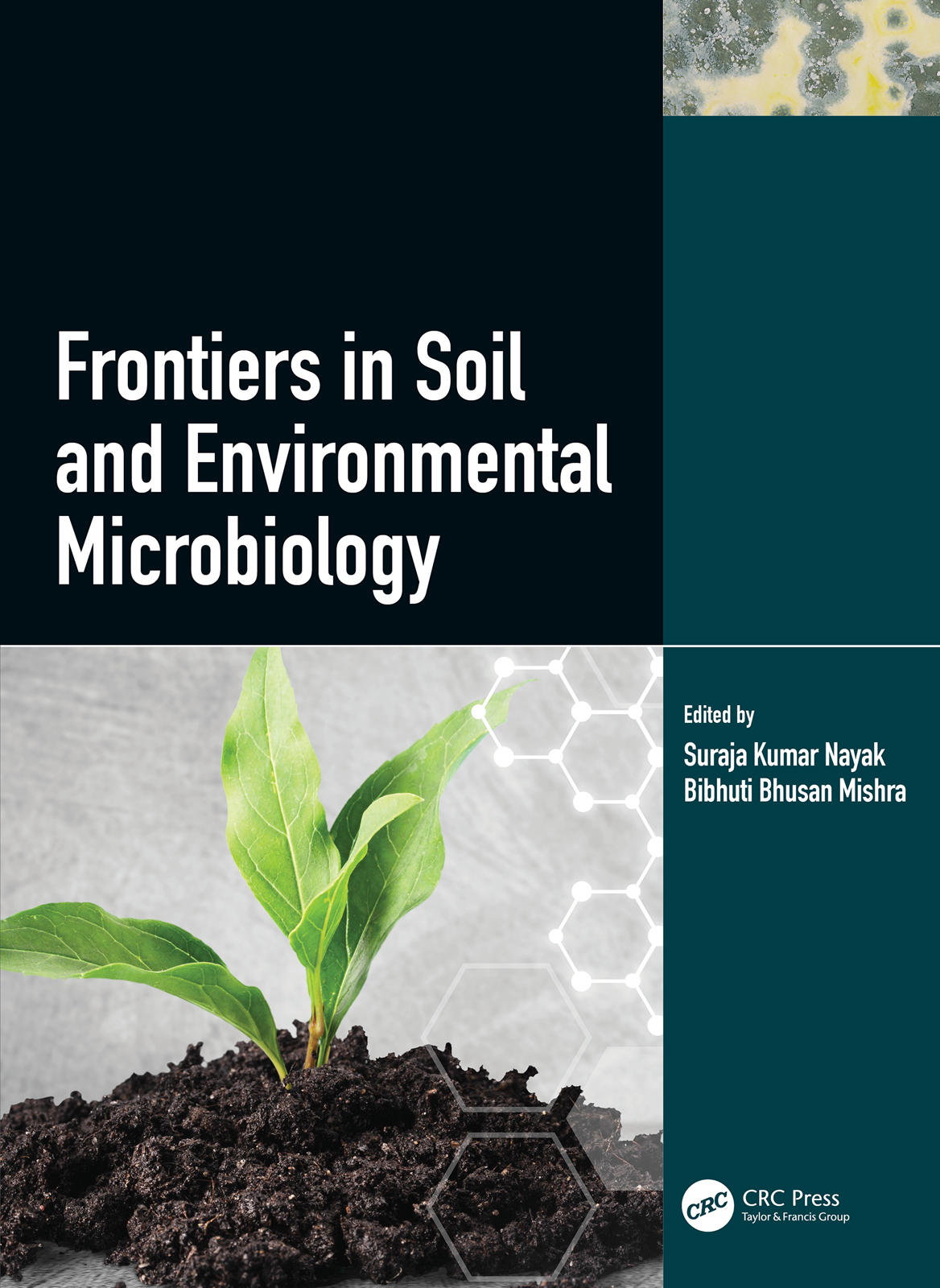 Frontiers in Soil and Environmental Microbiology book cover