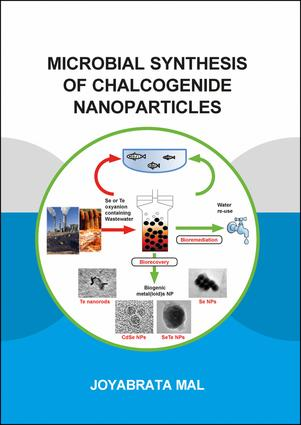 Microbial Synthesis of Chalcogenide Nanoparticles: Combining Bioremediation and Biorecovery of Chalcogen in the Form of Chalcogenide Nanoparticles, 1st Edition (Paperback) book cover