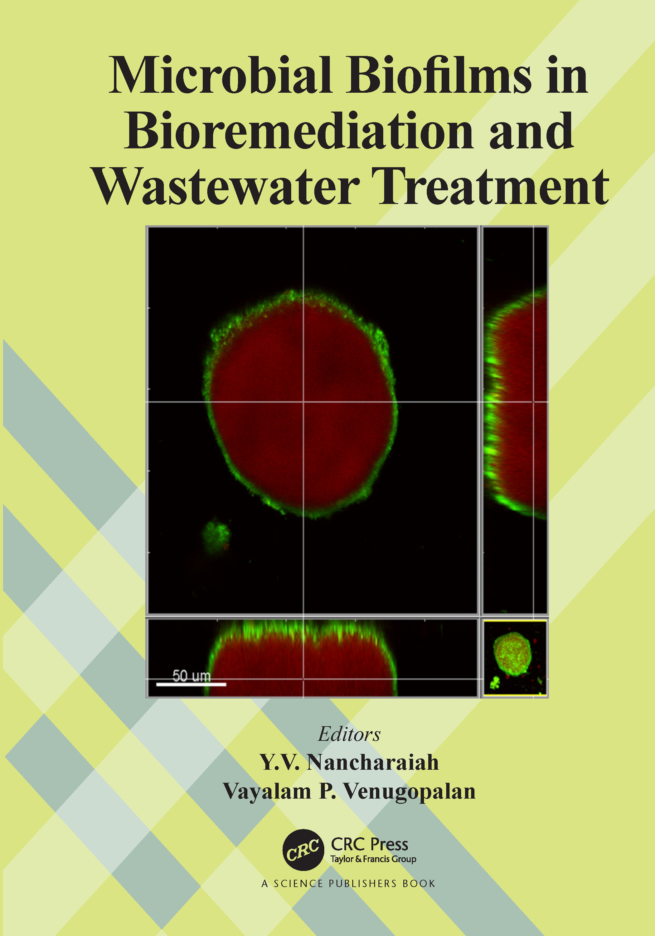 Emerging Trends in Bioremediation of Explosive Industry Wastewater