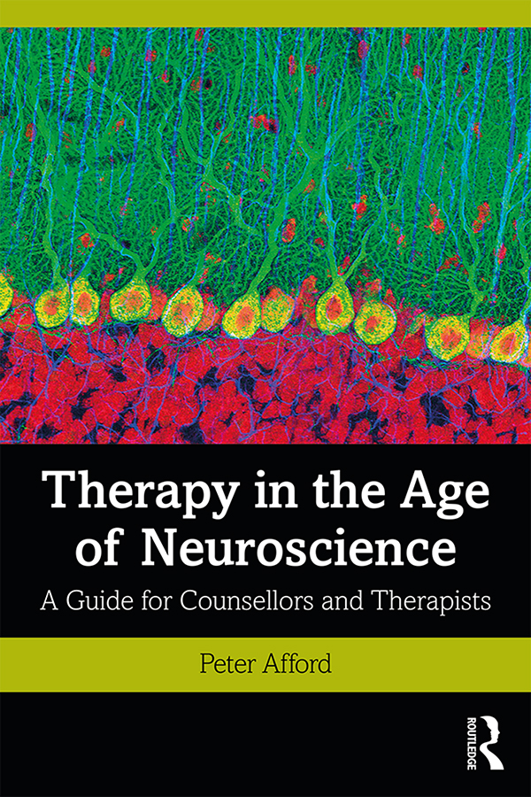Therapy in the Age of Neuroscience: A Guide for Counsellors and Therapists book cover