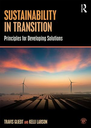 Sustainability in Transition: Principles for Developing Solutions book cover
