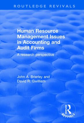 The Audit Environment