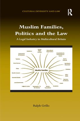Muslim Families, Politics and the Law: A Legal Industry in Multicultural Britain book cover