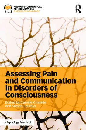 Assessing Pain and Communication in Disorders of Consciousness book cover