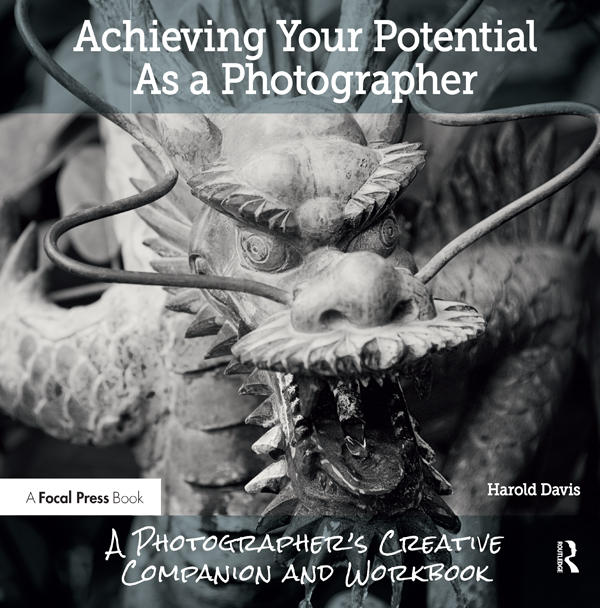 Achieving Your Potential As A Photographer: A Creative Companion and Workbook book cover
