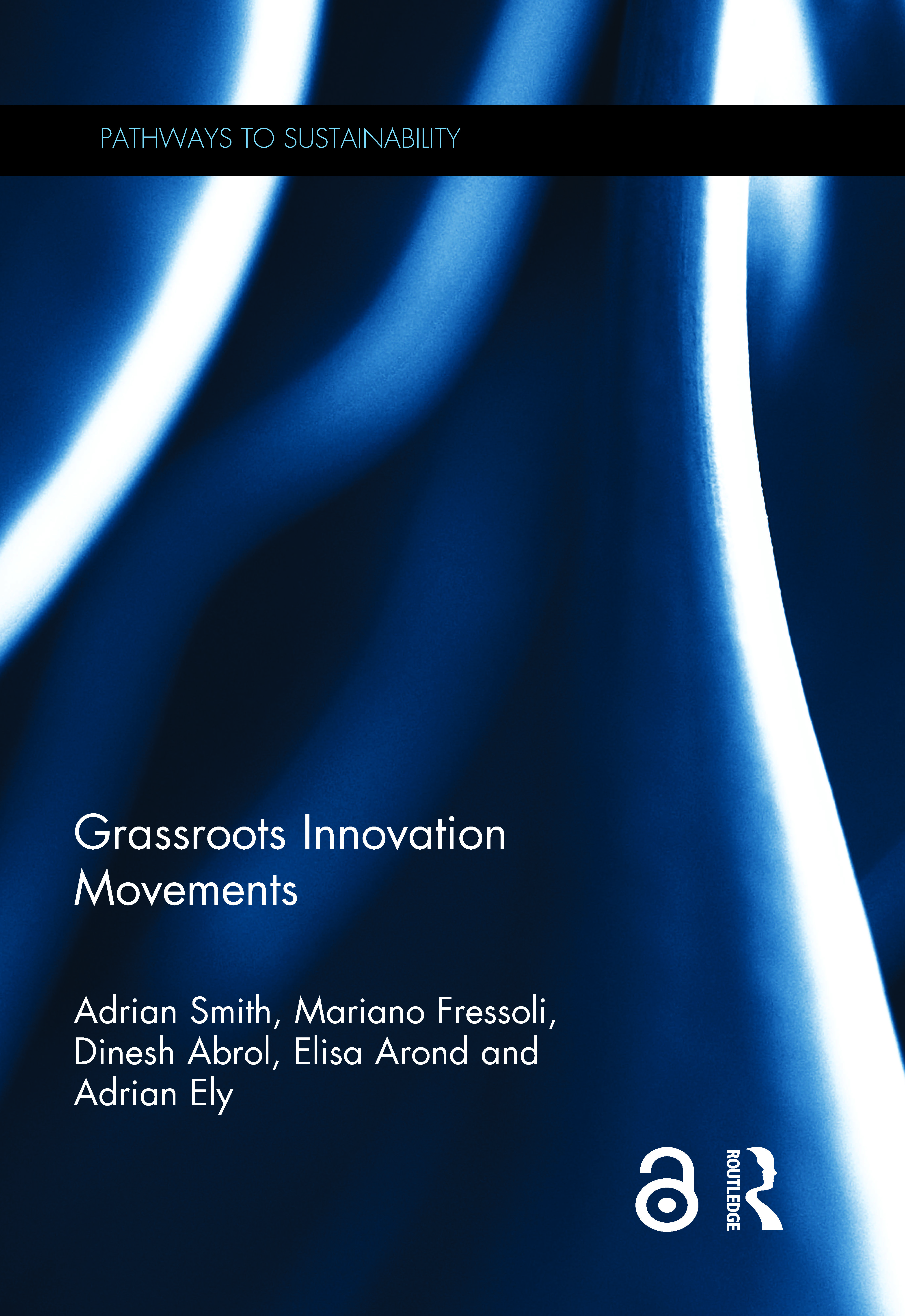 Grassroots Innovation Movements book cover