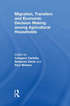 Migration, Transfers and Economic Decision Making among Agricultural Households: 1st Edition (Paperback) book cover