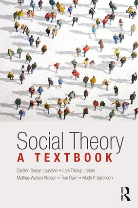 Social Theory: A Textbook (Paperback) book cover