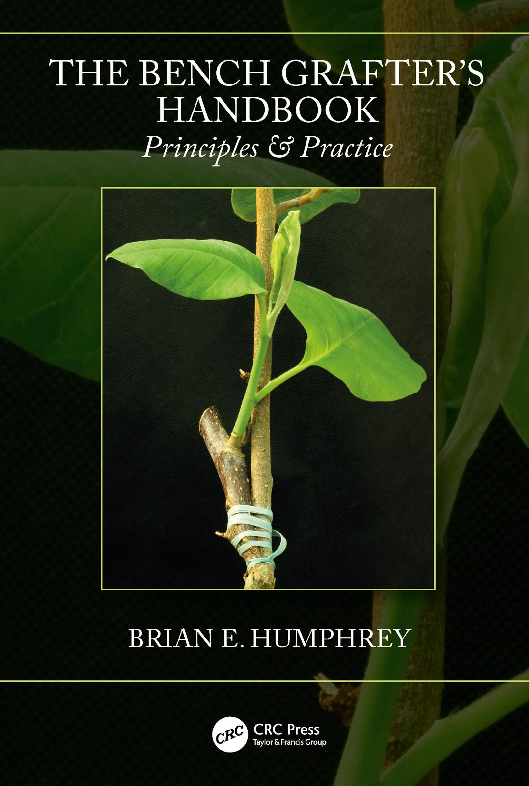 Amelanchier (Rosaceae) – Snowy Mespilus