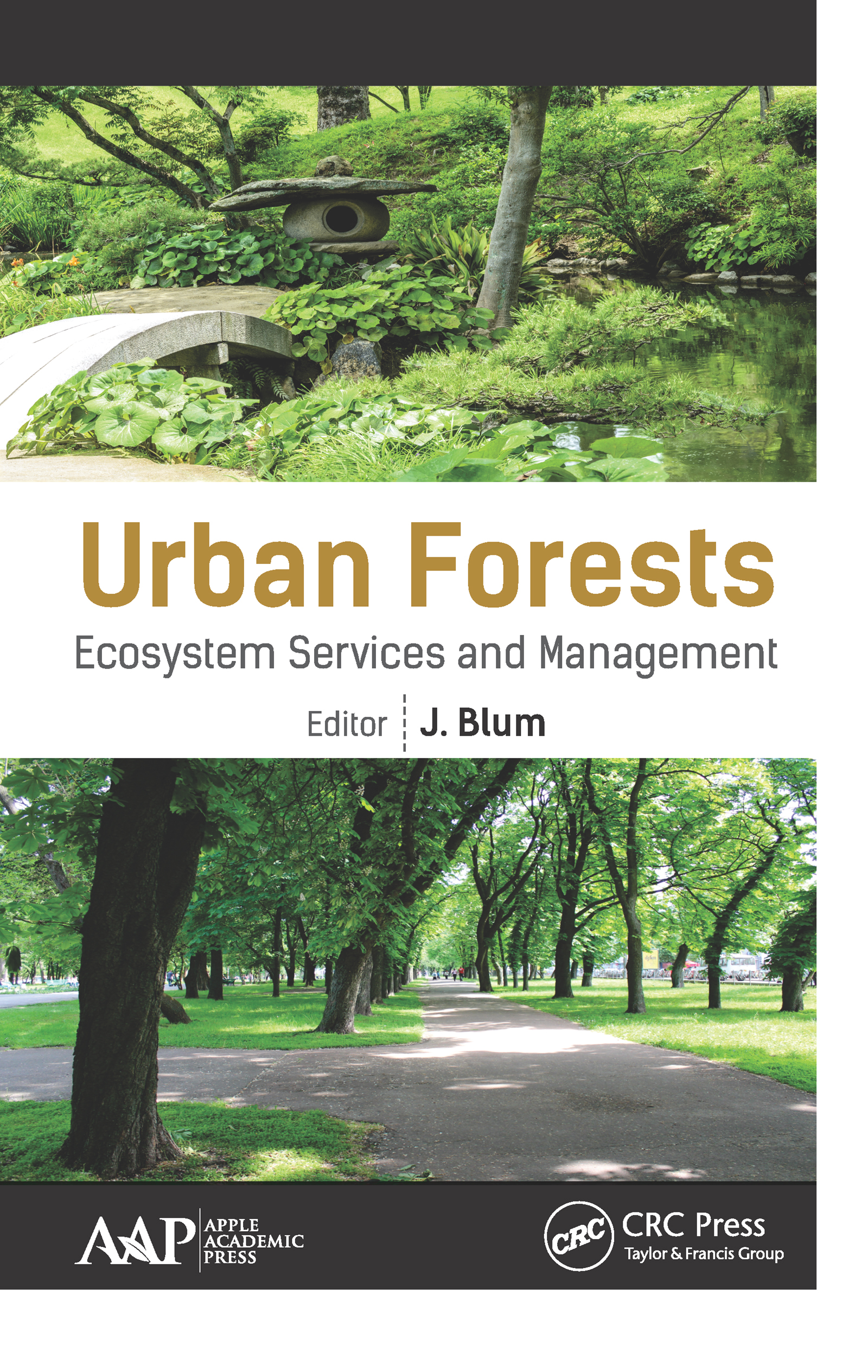 110 Years of Change in Urban Tree Stocks and Associated Carbon Storage