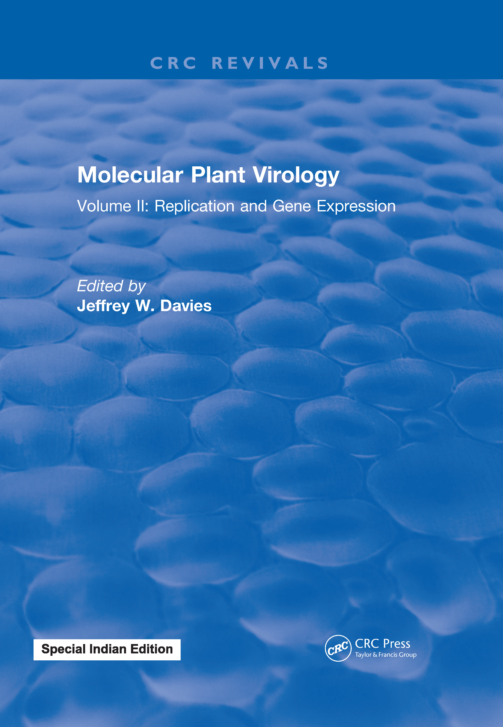 Molecular Plant Virology: Volume II: Replication and Gene Expression, 1st Edition (Hardback) book cover