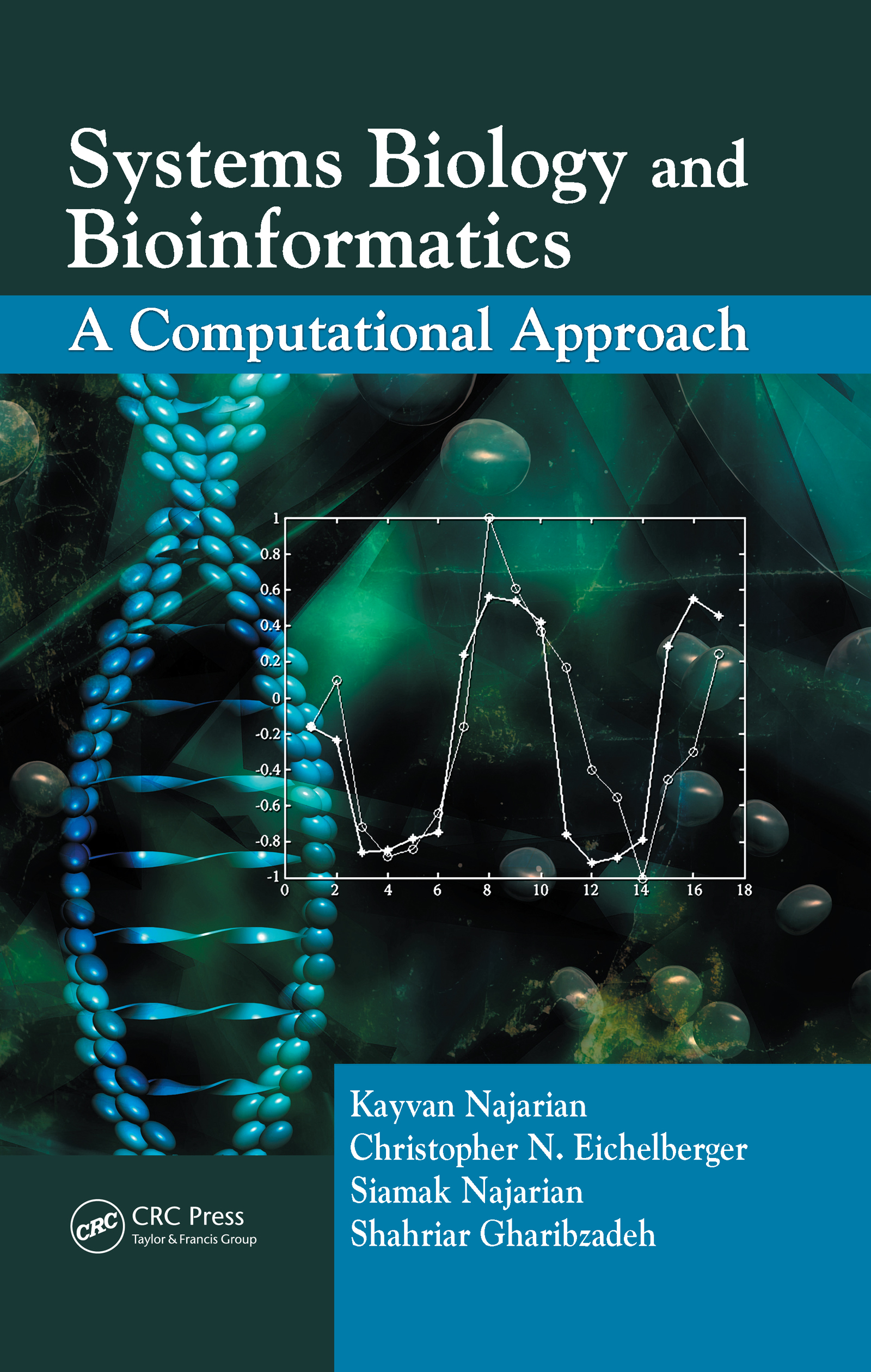 Systems Biology and Bioinformatics: A Computational Approach, 1st Edition (Hardback) book cover
