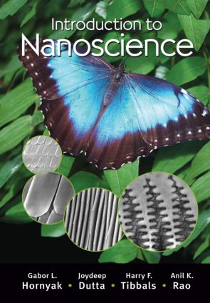 Introduction to Nanoscience: 1st Edition (Hardback) book cover
